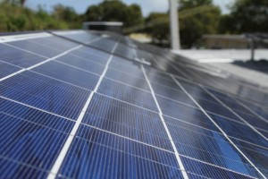 Farmers will be able to slash their on-site energy bills through the installation of solar panels.